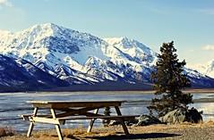 Lets have a picnic . . (JLS Photography - Alaska) Tags: mountain lake snow mountains nature water landscape landscapes spring scenery outdoor yukon wilderness picnictable northof60 kluanelake jlsphotographyalaska