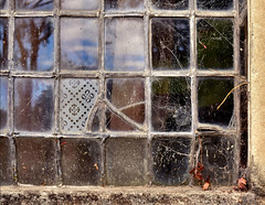 Montsalvat (phunnyfotos) Tags: phunnyfotos australia nikon d5100 nikond5100 victoria vic melbourne eltham window leadlight spiderwebs glass glazing montsalvat architecture old melburnian grid pattern geometry oddoneout