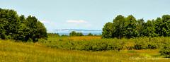 South Fox Island ... (Ken Scott) Tags: summer usa michigan july lakemichigan greatlakes freshwater 2014 leelanau cherryorchard 45thparallel southfoxisland panoramacrop kenscottphotography kenscottphotographycom