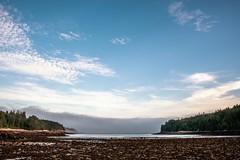 As The Tide Rolls Out, The Fog Bank Rolls In (rickhanger) Tags: acadia acadianationalpark tide lowtide ocean cove fog fogbank nature maine rickhangerphotography landscape rickhanger