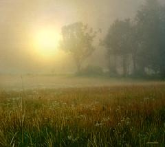 ...Truth exists (xandram) Tags: morning summer sun fog photoshop textures murdockfeild
