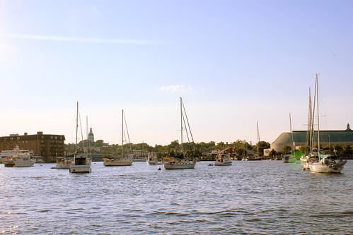maryland sail annapolis chesapeake
