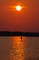 paddle boarding in sunbeam