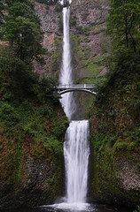 Multnomah Falls (DTB) Tags: none