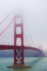 GGB (tisana al tiglio) Tags: ocean sanfrancisco california bridge red sea usa mist west fog landscape nikon pacific cost goldengatebridge sausalito presidio ggb d90 flickrchallengegroup flickrchallengewinner tisanaltiglio