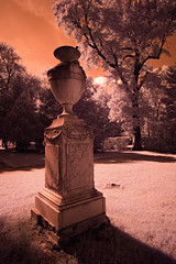 The Urn (Infrared) (tjshot) Tags: park wood old trees light italy white black nature grass leaves urn bronze contrast trekking trek vintage reflections outdoors lights interesting ancient woods europe italia mood branch glow fuji outdoor branches air halo x hike bark infrared gloom 28 trans pure tones tre effect fujinon tone xf 14mm xe1