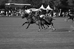 F Polo Team vs. Technogym Axus Polo Team (Claude Schildknecht) Tags: horse cheval master polo pferd gassin