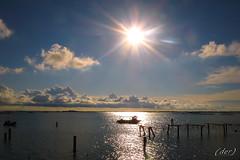 ____ col sole in fronte ____ (erman_53fotoclik) Tags: panorama barca nuvole cielo laguna sole pali acqua paesaggio dmc controluce riflesso orizzonte destro veneto ermanno sacca rovigo fronte deltadelpo scardovari allevamenti panasonik tz25 erman53fotoclik