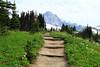 IMG_2391 (the magician's assistant) Tags: trees mountain green nature washington hiking path rainier
