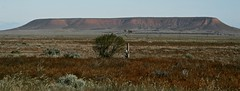 Flinders Ranges (Melody Ayres-Griffiths) Tags: australia outback southaustralia flindersranges portaugusta