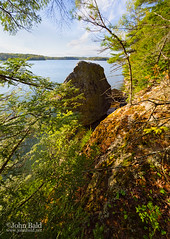 Harraseeket River, Freeport, Maine (12846) (John Bald) Tags: statepark blue green pine clouds river maine newengland dramatic bluesky shore freeport spruce wolfesneck wolfesneckstatepark harraseeketriver