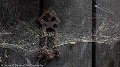 The Old Keyhole 2014-08-15 16.09.35.jpg (Sav's Photo Gallery) Tags: uk london cobweb oldlock olddoor savash samsungs4