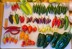 This Week's Heat (danbruell) Tags: food hot vegetables healthy farmersmarket michigan annarbor peppers produce local spicy