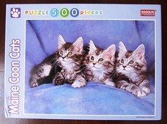 Maine Coon Cats - the box (Leonisha) Tags: puzzle jigsawpuzzle puzzlebox puzzleschachtel