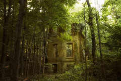 Here I Wait (SunnyDazzled) Tags: trees house newyork brick abandoned home nature forest landscape lost woods ruins shadows empty glen forgotten cedar walls mansion
