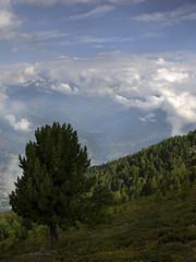 004 - un manto di nubi (TFRARUG) Tags: alps alpine alpi beccadinona emilius