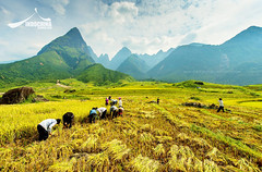 Fansipan Mountain, Sapa Vietnam
