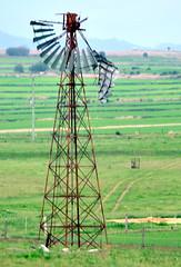 Derelict Intercolonial Boring Company (IBC) New Simplex windmill; Warwick area, Queensland, Australia (sarracenia.flava) Tags: ibc new simplex rare windmill derelict warwick queensland australia qld intercolonialboringcompany