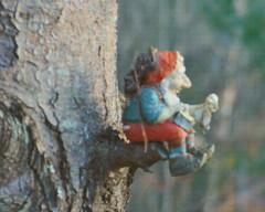 Dreaming (wildrosetn39) Tags: sitting pondering pine leprechaun bokeh