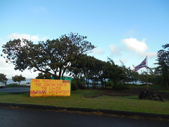 Lawful Hawaiian Government Protest Sign (jimmywayne) Tags: hawaii hookipapark hookipa maui mauicounty ocean protest