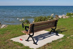 flower bench (ladybugdiscovery) Tags: bench flowers candles shadow bay water rock park