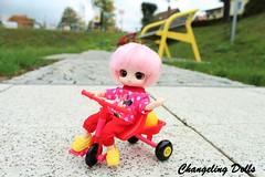 (ChangelingDolls) Tags: little byul my melody pullip docolla dal taeyang obitsu