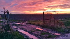 Through the gates of .... (Jaco Verheul) Tags: sunset dusk gate gates water color colorfull sky phonephoto clouds fire cloudporn cloud jacoverheul landscape pink samsung