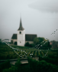 Kirche Ligerz (noberson) Tags: ligerz schweiz switzerland bokeh macro church lake fog foggy mist mood moody bielersee reben wineyard wineyards drops spiderweb web