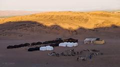 Moroccan dawn (Studio Hors-champ) Tags: moroccan dawn marocco morocco travel africa marrakesh maroc