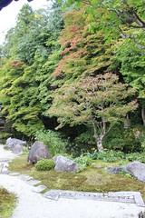 im Zengarten