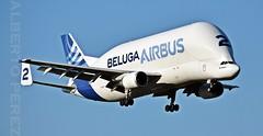Airbus Airbus A300B4-608ST Super Transporter (F-GSTB) (alberto vtr) Tags: airbus a300b4608st super transporter fgstb beluga ballena avion plane carga aterizaje getafe base aerea aviacion spotter spotters spotting nikon d5300 a300 a 300