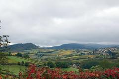 2016-10-24 10-30 Burgund 182 Berze-La-Ville