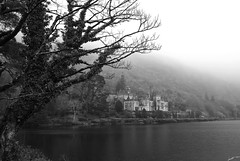 Kylemore Abbey (Laph95) Tags: abbey kylemore ireland galway abbaye religion religious place fog brouillard brume nb bw monochrome water eau lac loch lake nature extrieur outside tree arbre
