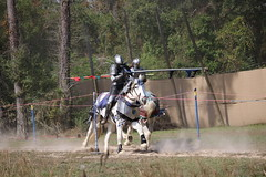 IMG_4804 (joyannmadd) Tags: horse rider joust spar duel warhorse hammoind louisiana armour outdoor game war combat midevil larenfest dirt run armor helmet mask fight win competition