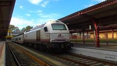 Esta vez con 334 (javivillanuevarico) Tags: renfe 334010 trenes ferrol