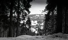 Combloux, Mont Blanc, 18 (Patrick.Raymond (3M views)) Tags: haute savoie combloux montagne neige argentique nikon tmax