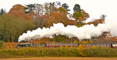 Eriestoke Manor (chris .p) Tags: nikon d610 gwr 7800 class 7812 erlestoke manor worcestershire england november 2016 capture svr severnvalleyrailway uk steam autumn