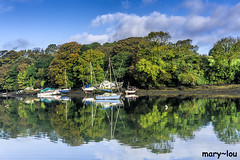 DSC00812 (mary~lou) Tags: nikon mary~lou maryfletcher reflection trees river boats penryn