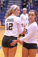 IMG_8060 (SJH Foto) Tags: girls volleyball high school york delone catholic team teen teenager substitution sub rotation