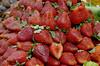 moranguinho (CehAkemiFotografia) Tags: bolacha morango fruta chá xícaras pires porcelana florzinha decorão cookies saopaulo brasil
