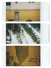 Monterrey, NL, Mexico (Eugenia Indri) Tags: monterrey mexico yellow platano accin potica urban street graffiti wall minimal old instax snapshot polaroid fujifilm mini 8 factory vintage abandoned leon nuevo green