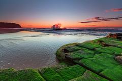 Turimetta Beach At Sunrise (Alex Galiano) Tags: australia sydney sunsetandsunrises beach greenmoss ocean rocks slipperyrocks sunrise absolutelystunningscapes cloudsstormssunsetssunrises