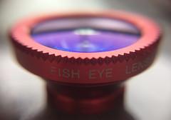 Lente sobre lente. (Rgis Cardoso) Tags: lens lente fish peixe macro