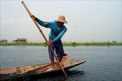 Harvesting seaweed (*Kicki*) Tags: seaweed harvest harvesting man person fisherman people hat stick boat longboat lake water inlelake inlaylake inlay inle shanstate myanmar burma sky 50mm canoe candid bokeh
