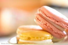 Macaroons (melike erkan) Tags: macaroons closeup macro nikon nikon105mm 1o5mmmicro bokeh soft softfocus pastels pink oeach beige yellow