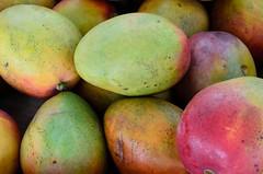 Fruit stand in Florida City, FL (gdajewski) Tags: city closeup fruit florida mango everglades homestead 2014