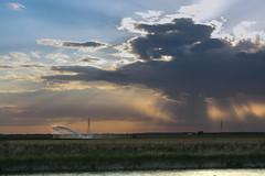 Campagne valli di Comacchio, Ferrara, Emilia Romagna (william eos) Tags: tramonto ferrara campagne vallidicomacchio deltadelp williamprandi