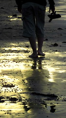 quando a terra brilha (marcia.kohatsu) Tags: sunset summer praia beach walking portobelo santacatarina caminhando manwalking perequ