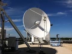 Anglų lietuvių žodynas. Žodis antenna reiškia n 1 (pl antennas) antena; 2) (plantennae) zool. čiuptuvėlis lietuviškai.