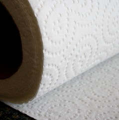 Paper Towel (Pyogenes Gruffer) Tags: white paper towel roll weeklytheme 500x500 bsquare flickr theme lounge weekly unlimitedphotos flickrlounge